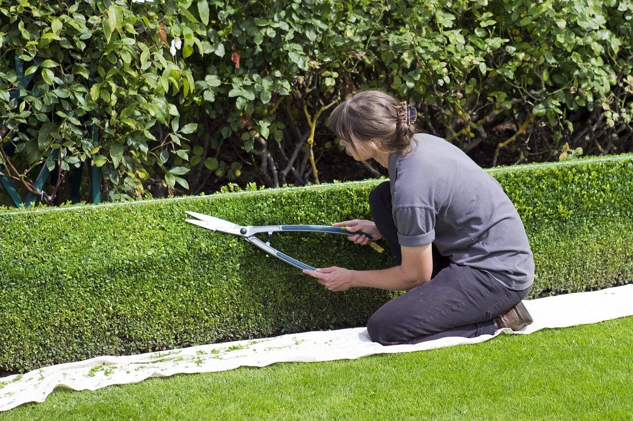 https://www.happytomeetyou.fr/app/uploads/2019/05/596zaa1oua_jardinier.jpg